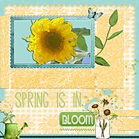 Bloom9.jpg