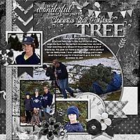Choose_the_Perfect_Tree.jpg