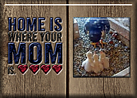 Home-is-Where-Your-Mom-Is1.jpg