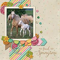 Spring_Foal.jpg