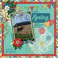 sweet_Spring3.jpg