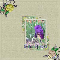 2015-03-LJDSpringFlowersWeb.jpg