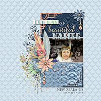 20180307_Napier2web.jpg