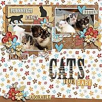Kittycatso.jpg