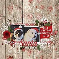 2-santa-puppy-1207olls.jpg