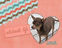 Celebrate-Life2.jpg