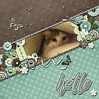 Hello_-Gemini.jpg
