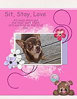 Sit_-Stay_-Love.jpg