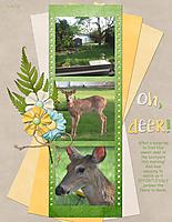 Oh_-deer.jpg