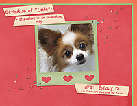 Definition-of-Cute---2.jpg