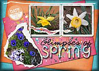 Glimpses-of-spring.jpg