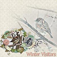 Winter_Visitors_GS.jpg