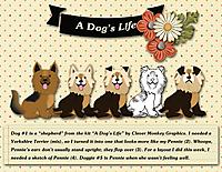 A-Dog_s-Life.jpg