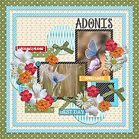 Adonis_GS.jpg