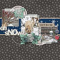 Oh_SNOW_GS.jpg
