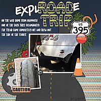 explode_trip.jpg