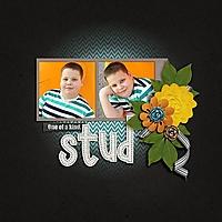 Stud-01.jpg