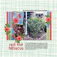 red-hot-hibiscus-4GSweb.jpg