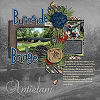 web_burnsidebridge_pcg_marchchallenge_TEMP2.jpg