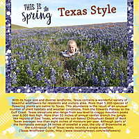 This-Is-Spring---Texas-Style.jpg