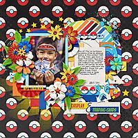 2014-06-07-cosplayandtradingcards_sm.jpg