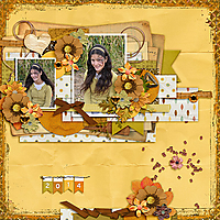 AimeeHarrison_NovemberTopaz-Tinci_VintageVintage-Jula2015_copy.jpg