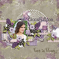 FD-TD-Lilacs-and-Lace-21April.jpg