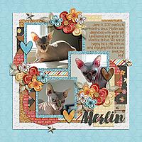 Merlin-16_months.jpg