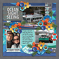 Ocean_Sight_Seeing.jpg