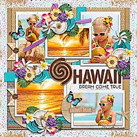cs-atw-hawaii.jpg
