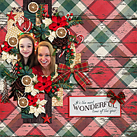 wonderful_time_of_year.jpg