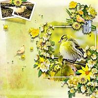 bird-gossip-bee-creations-n.jpg