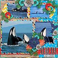 Seattle-Whale-Watching.jpg