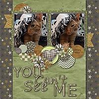 See_Me.jpg