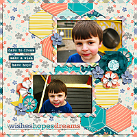 WishesHopesDreams.jpg