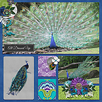 peacock-beauty.jpg