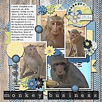 Monkey_Business_small.jpg