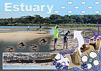 Estuary-02-S.jpg