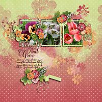 Bloom-and-grow3.jpg