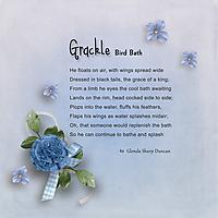Grackle_Bird-Bath_FontChal_Feb_GS_WEB.jpg