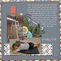 CrazyCat-mdm_EverydayLife.jpg