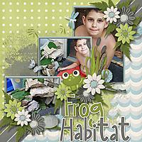 FrogHabitat.jpg