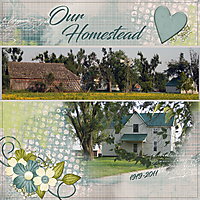 Our-Homestead.jpg