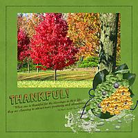 Be_thankful2.jpg