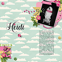 1-23-17-Heidi.jpg