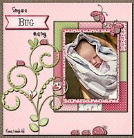 Snug_as_a_Bug.jpg