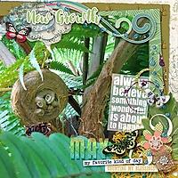 RainforestNewGrowth_web.jpg