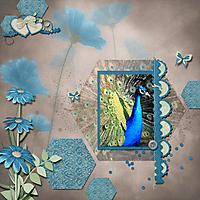 STB_Peacock.jpg