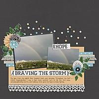 brave_the_storm_sized.jpg