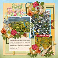 3-16-17-California-Bloom.jpg